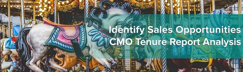 CMO Tenure Report Analysis.jpg