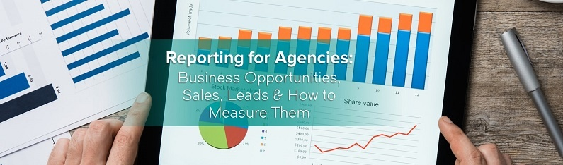 Reporting for Agencies - Business Opportunities Sales Leads asnd How to Measure THem.jpg
